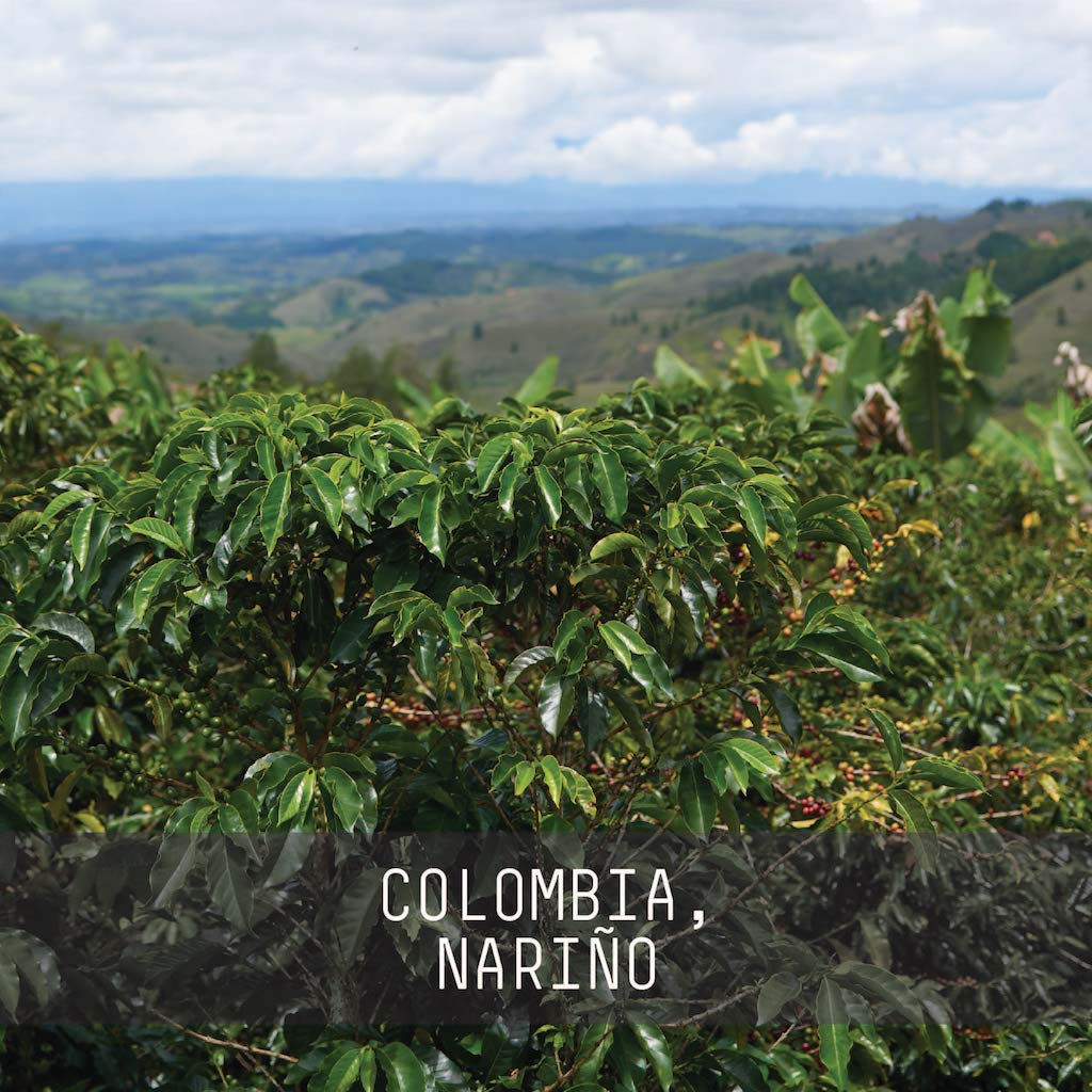 Colombia, Carlos Estrella - Single Origin Espresso