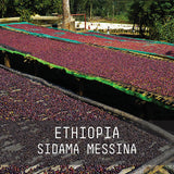 Ethiopia Sidama Messina - Filter Roast 250g