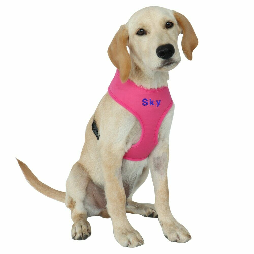 Personalised No Pull Nylon Dog Harness Soft Breathable Adjustable Pet Mesh Vest
