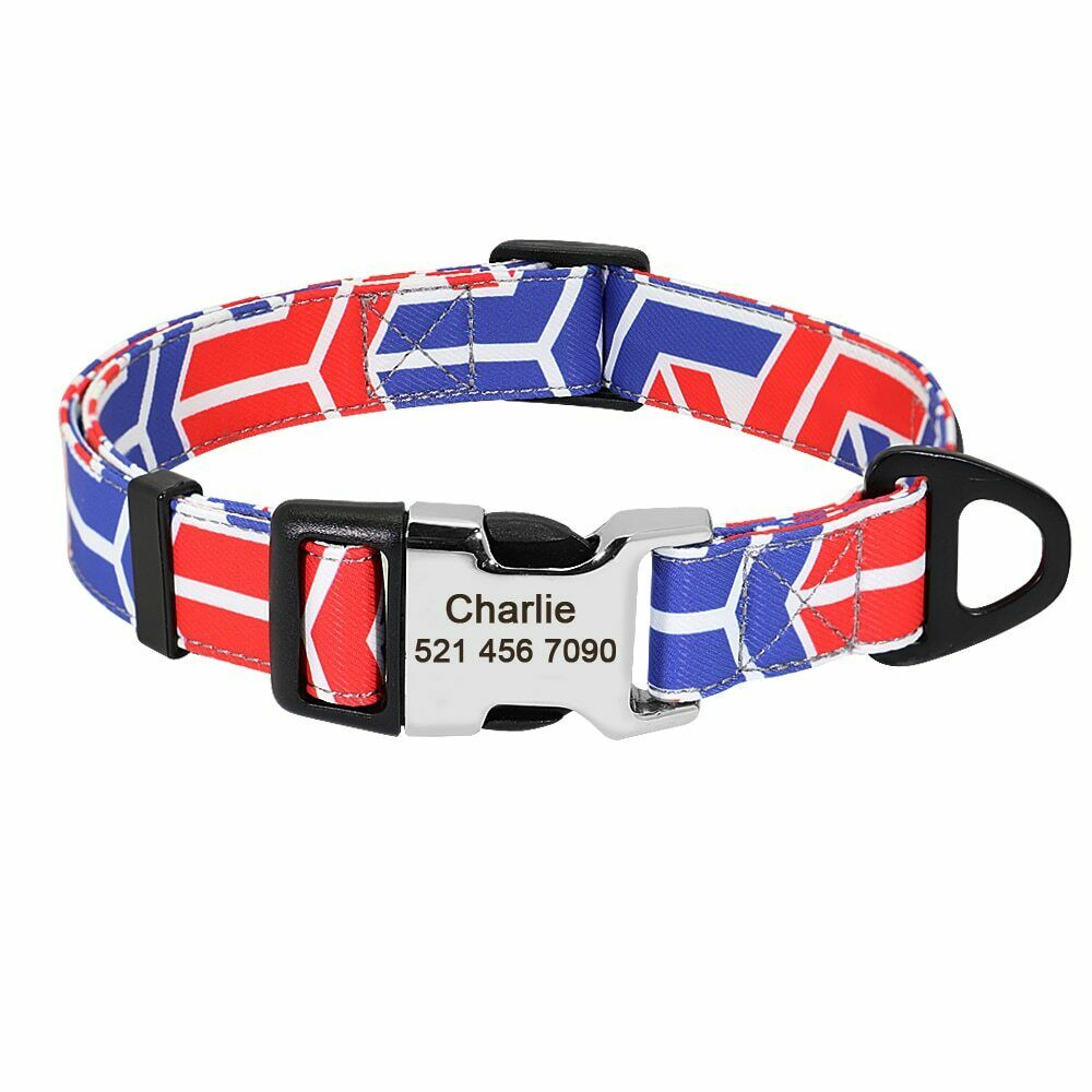 Personalised Nylon Dog Collar or Leash Set with Customized Engraved Name ID