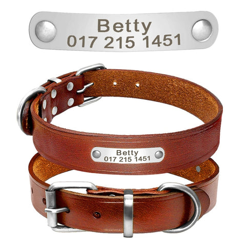 Personalized Laser Engraved Classic Genuine Leather Dog Collar (Gold/Silver buckle)