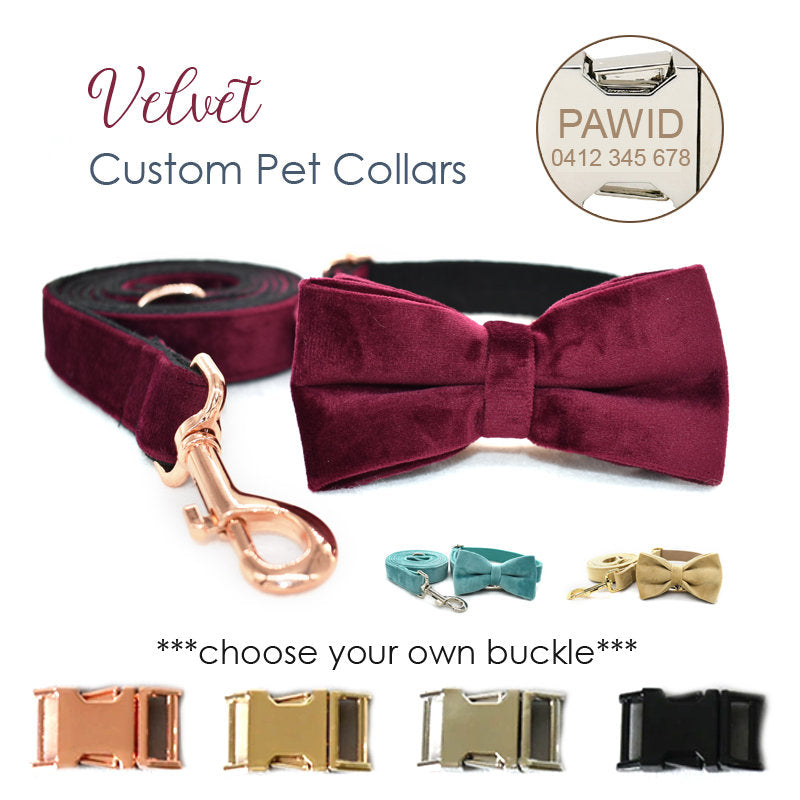 Personalized Laser Engraved Handmade Velvet Collar with DIY Buckles Dog Collar / Leash / Detachable Bowtie, different combos available