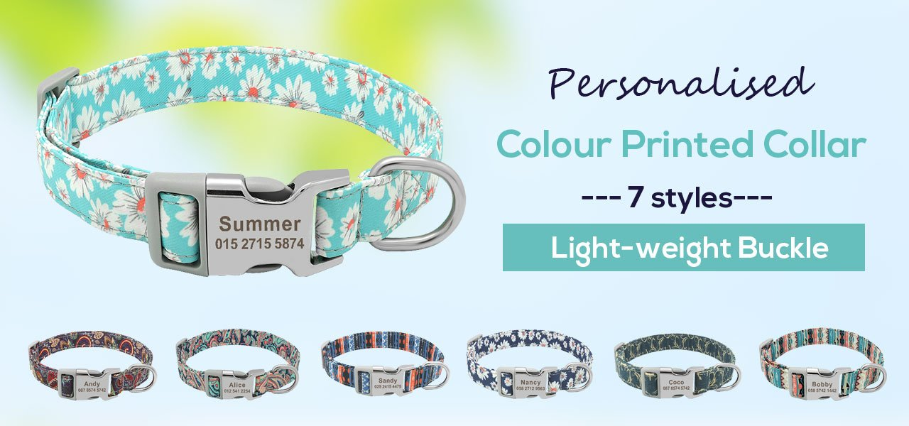 personalised customized dog collar