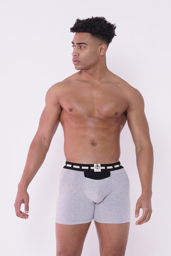 Austin Bodd Tech Boxer Briefs Gray