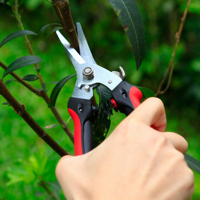The Gardener's Friend Pruning Snips, Lightweight and Small Pruners for Light Gardening, Great for Deadheading Flowers and Pruning Light Wood Ergonomically Designed for Smaller Hands