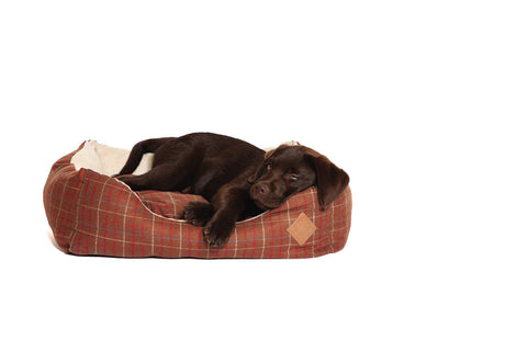 Snuggle Bed in Brown Tweed with Dog Lying