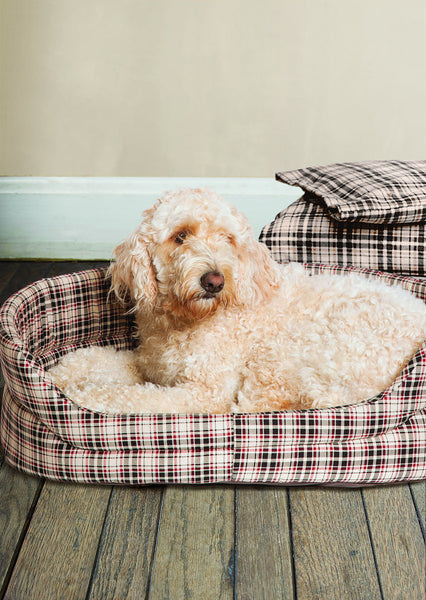 Slumber Bed in Classic Check with Dog Lying