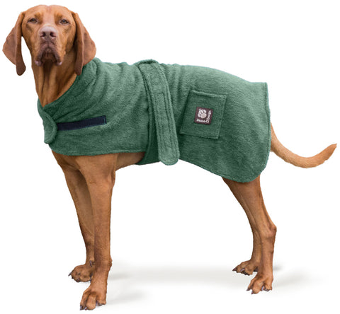 Cut out of dog wearing a green dog robe