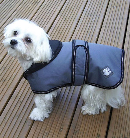 Luxury Dog Coat with Dog Wearing It