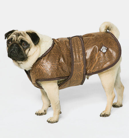 Dog Coats | Waggles Coat