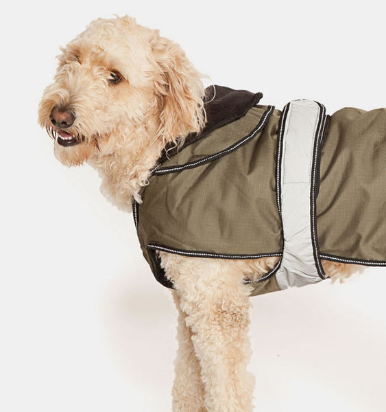 Dog Wearing a Two in One Dog Coat in Kahki