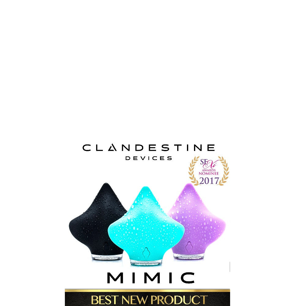 The MIMIC Recognized by Storerotica Awards!