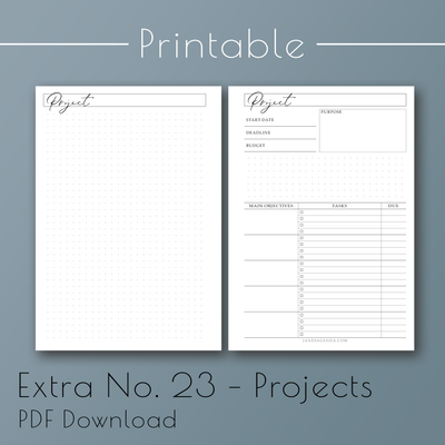 Printable PDF version of Extra Planner Inserts No. 23, Projects planner refill pages, by Jane's Agenda®.