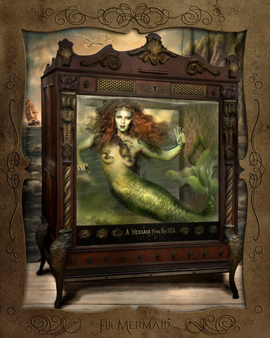Fiji Mermaid - proof