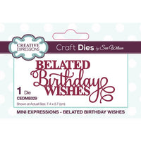 Creative Expressions - Mini Expressions Collection - Belated Birthday Wishes - CEDME029