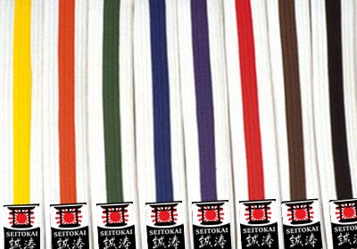 Martial Arts Striped Belts