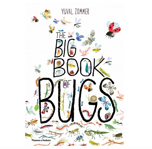 The Big Book of Bugs - Juniper Millbrook