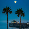 Palms, Pier, Pacific, Perfect