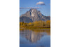 Oxbow Bend Fall-Vertical
