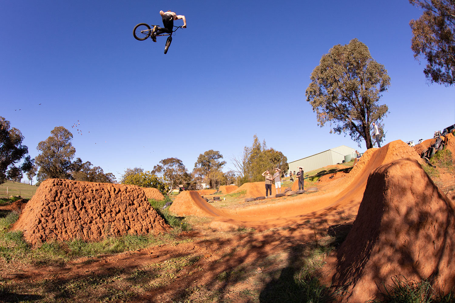 chris harti whipped dirty 30 bmx trails