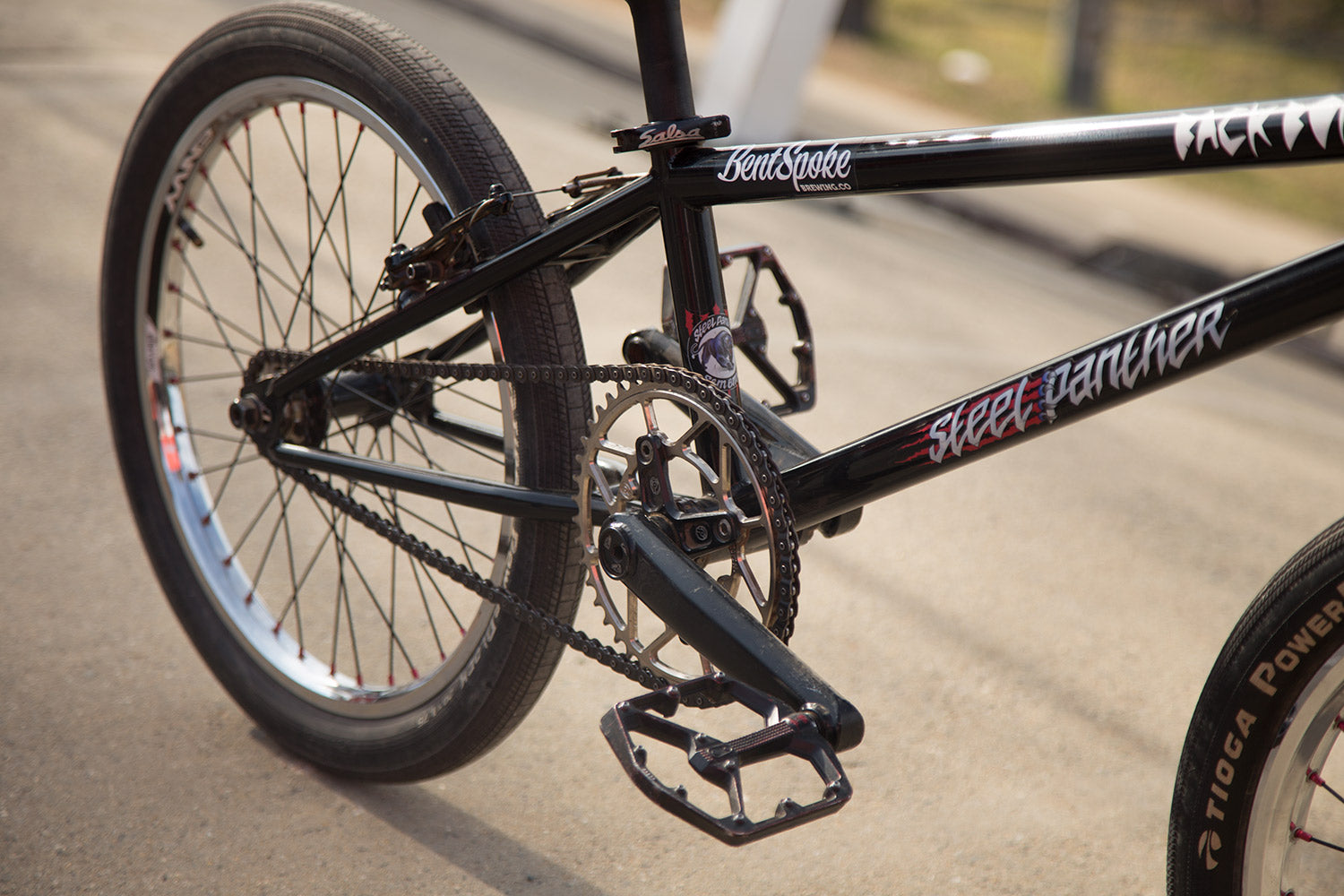 S&M Steel Panther race bike check cranks