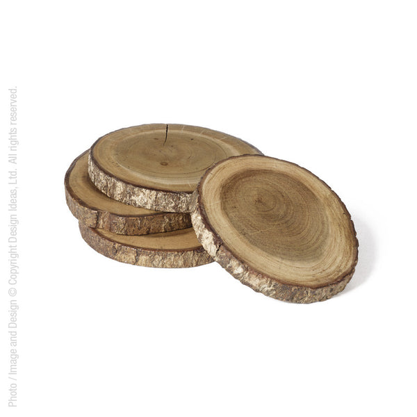 Tree Branch Coasters (Set of 4)