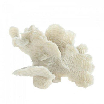 Large White Coral Tabletop Decor - www.myhomeandgardendecor.com