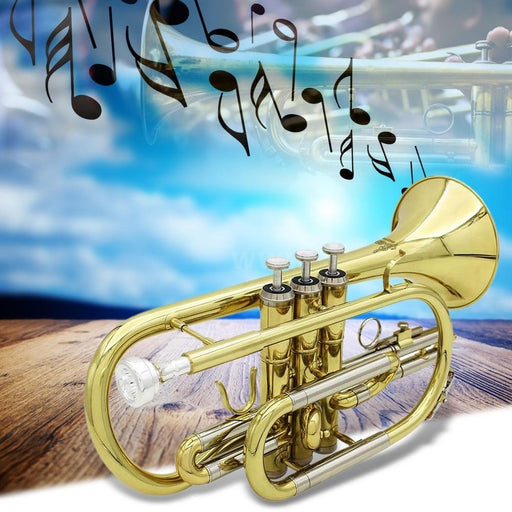 TechKara® Professional Bb Flat Cornet Brass Instrument with Kit