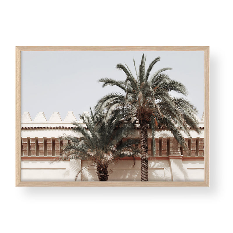 PALMS OF MOROCCO