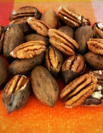 z - All Natural Pecans