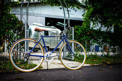 FL-01S-7Sp city bike