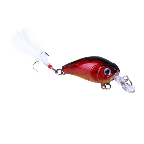 5 Piece Minnow Crank Fishing Lures