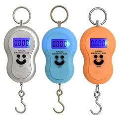 Portable 50kg/5g Mini Hanging Electronic Scale