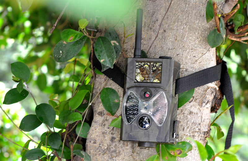 "Game Hunting Camera ""Wildview"" - 1080p HD, PIR Motion Detection, Night Vision, MMS Viewing, 2 Inch Screen"