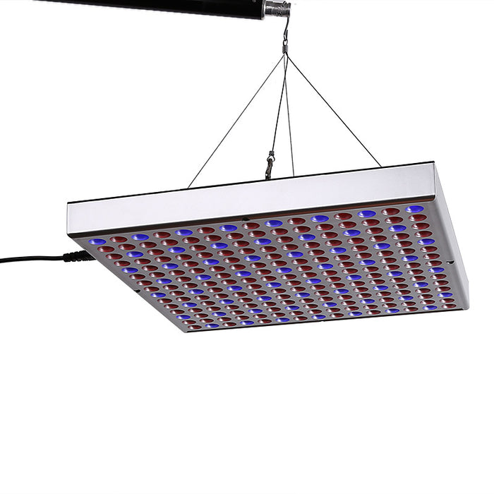 45Watt LED Grow Light - 225LED Lights, Blue And Red LED, 2160 Lumen, Stimulates Growth, Yield, And Flowering, Energy Efficient