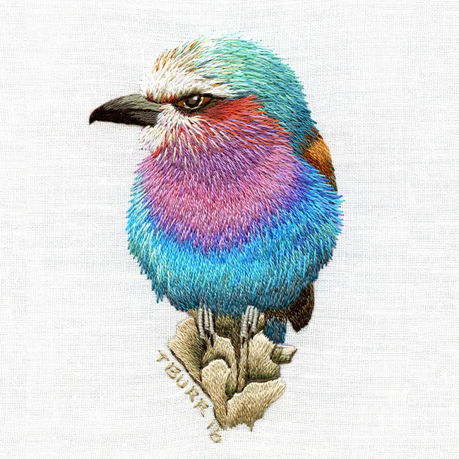 Needlepainting Birds