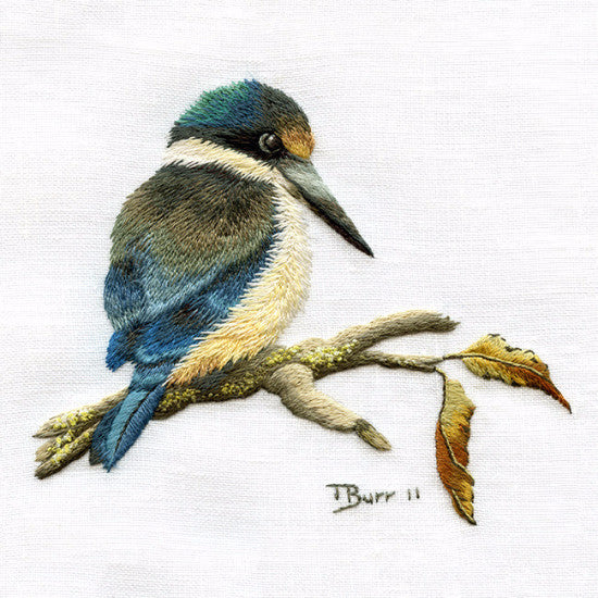 Kotare Kingfisher
