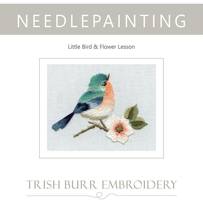 Lesson In Needlepainting Little Bird & Flower
