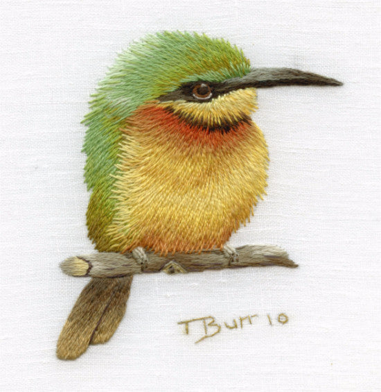 Level All - Little Bee eater