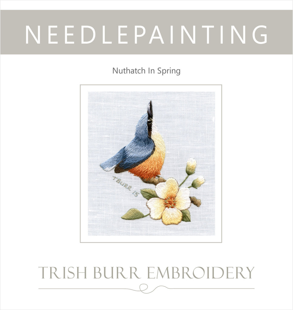 Level All Nuthatch in spring