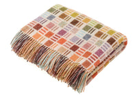 soft woollen blanket in rainbow colors