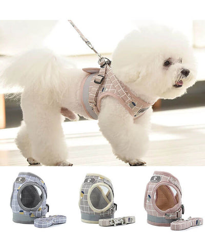 Cute Pet Dog Harness and Leash Small Dog Cat Vest