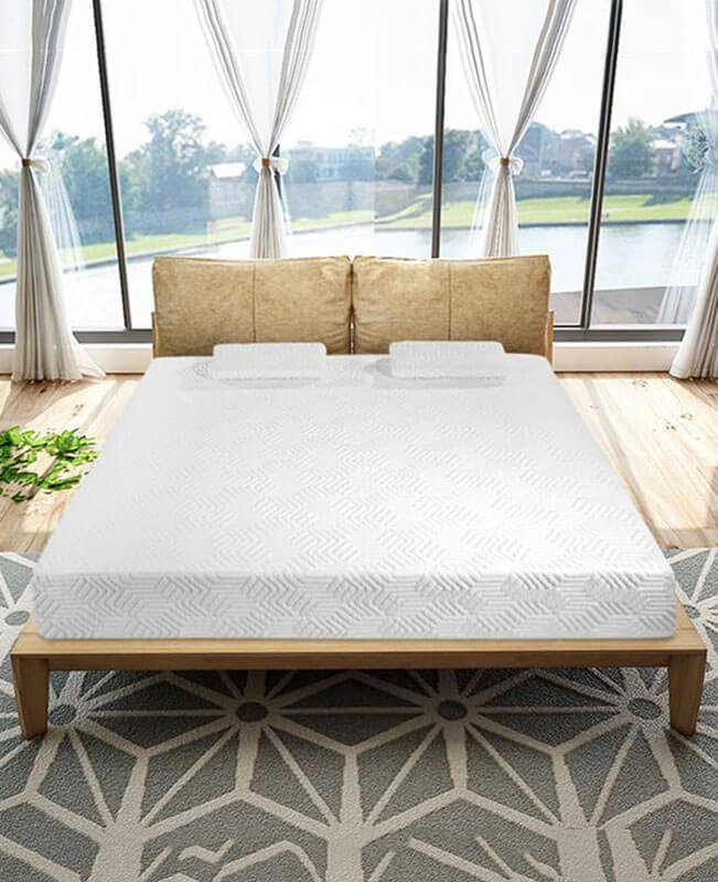 "10"" Memory Foam Mattress 2 Layers Twin Mattress With Pillows"