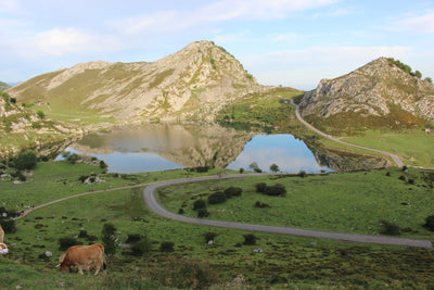 Asturias. Unique corners to get lost between Picos de Europa and the Cantabrian Sea