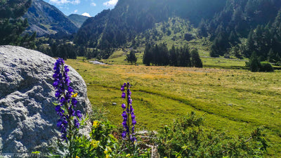 Three days surrounded by nature in the Benasque Valley and its surroundings