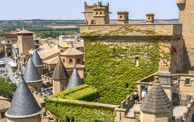 A journey through time to medieval Navarra