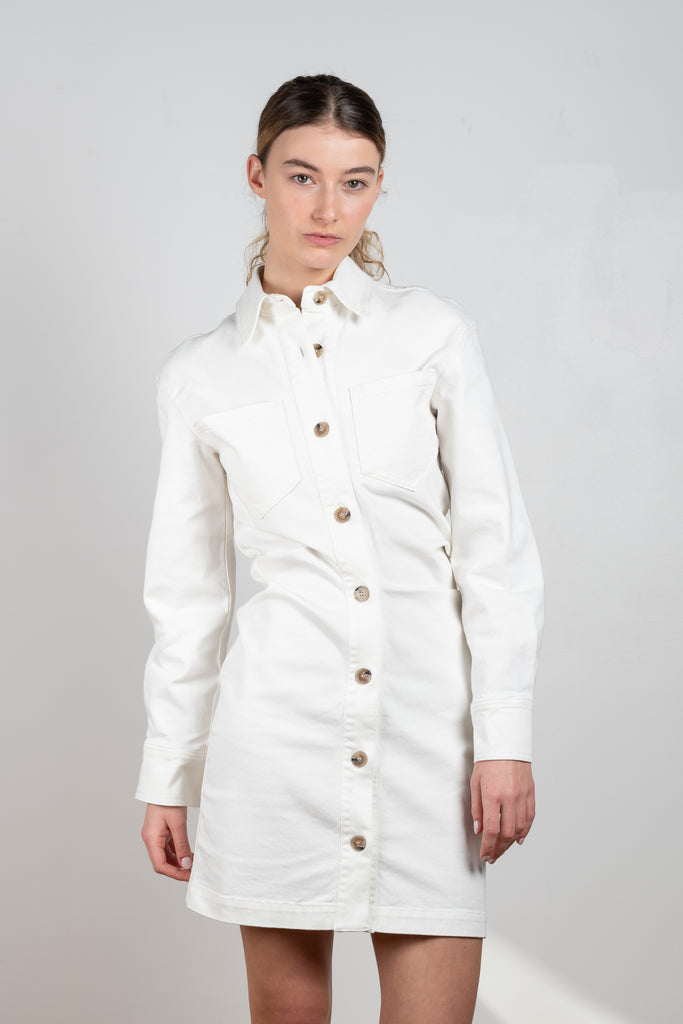 The Daisy dress by Nanushka is a fitted long sleeved mini dress with a centered waistline
