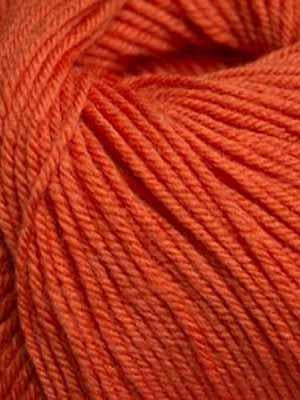 220 Superwash #822 Pumpkin - Mad Knitter's Yarn