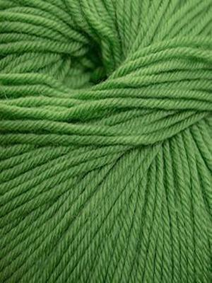 220 Superwash #906 Chartreuse - Mad Knitter's Yarn