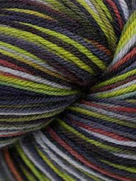 Heritage Paints #9924 Dissonance - Mad Knitter's Yarn